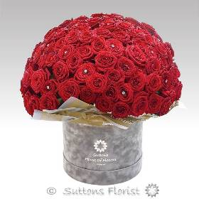 100 Luxury Rose Hatbox