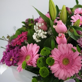 Mothers Day Gerbera Hand Tied Pink